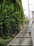 階段にいたる頃にはまた景色が変わる。